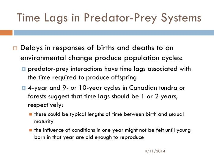 Time Lags in Predator-Prey Systems