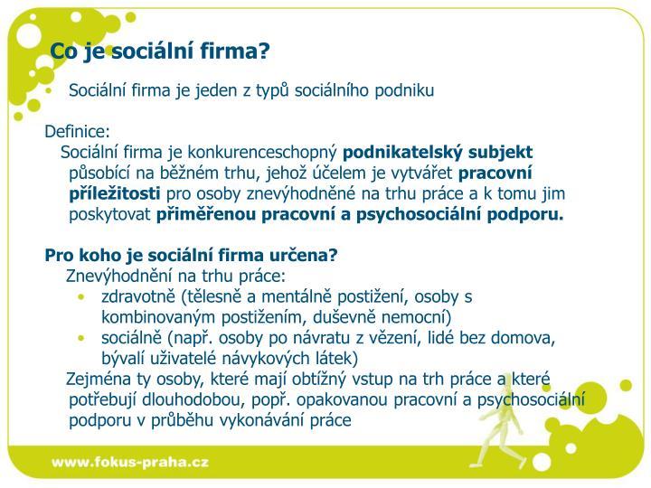 Co je sociální firma?