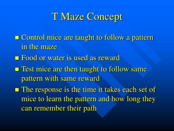 T Maze Concept