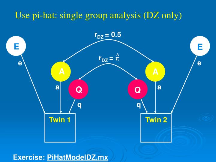 Use pi-hat: single group analysis (DZ only)