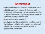 inspektor t