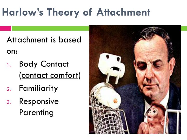 Harlow's Theory of Attachment