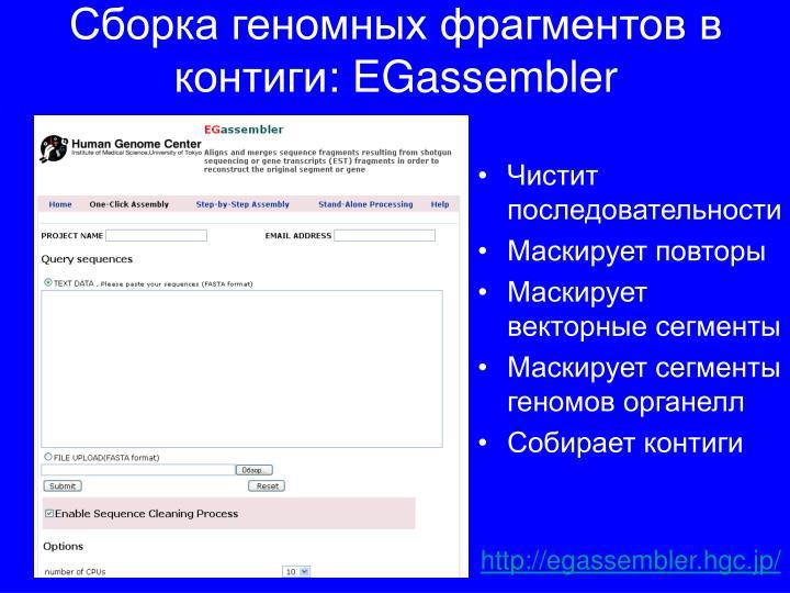 Сборка геномных фрагментов в контиги
