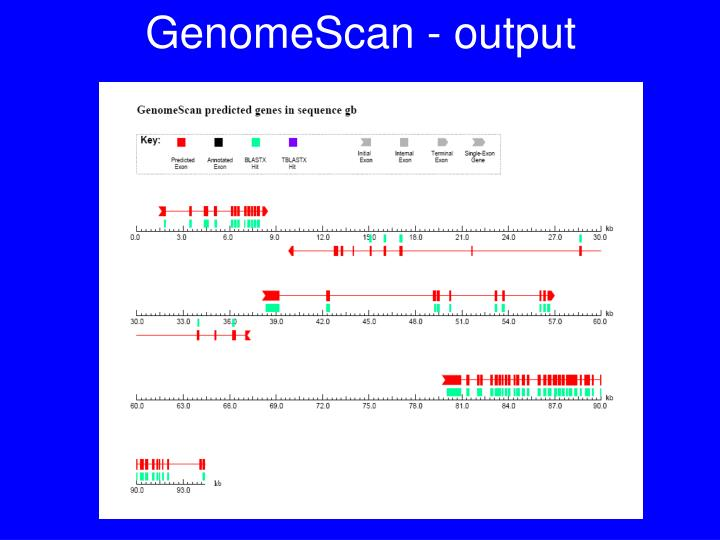 GenomeScan - output
