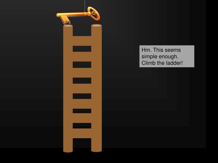 Ladder 'puzzle'