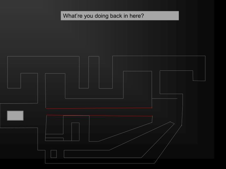 Side maze 3