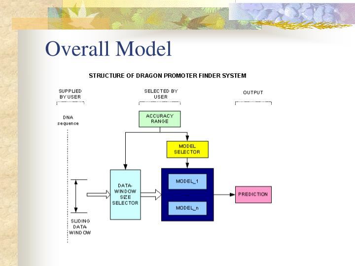 Overall Model