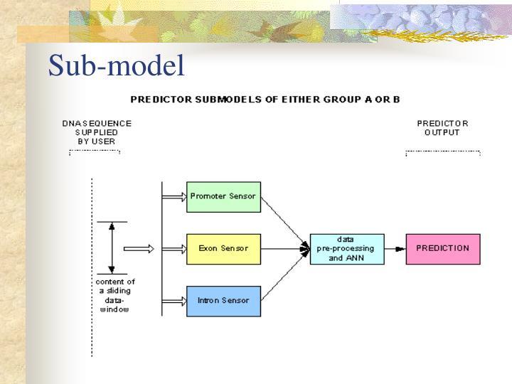 Sub-model