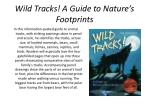 wild tracks a guide to nature s footprints