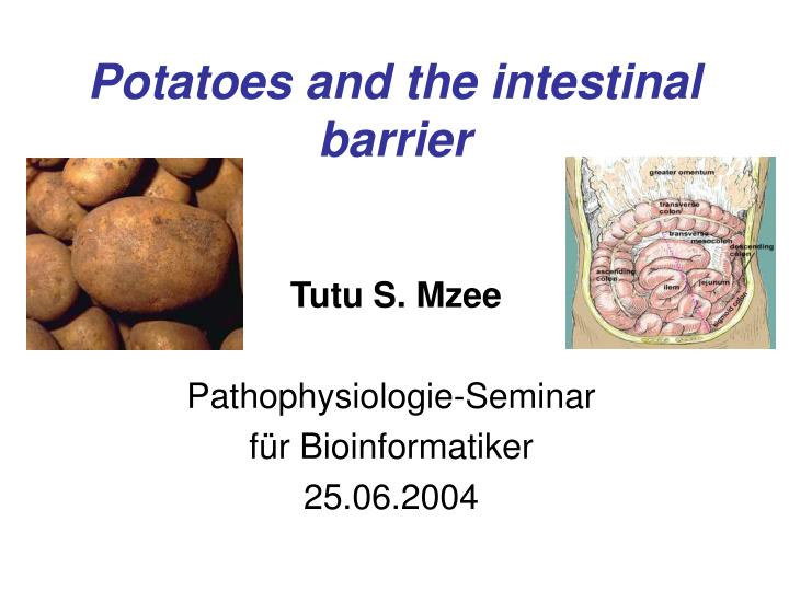 Potatoes and the intestinal barrier