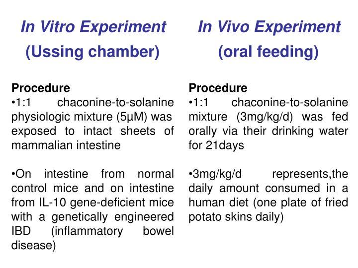 In Vitro Experiment