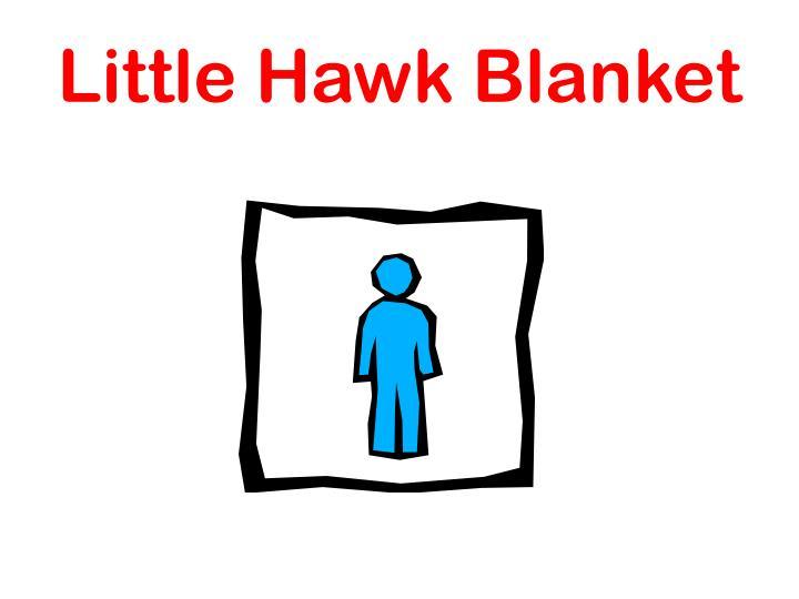 Little Hawk Blanket