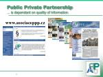 public private partnership is dependant on quality of information