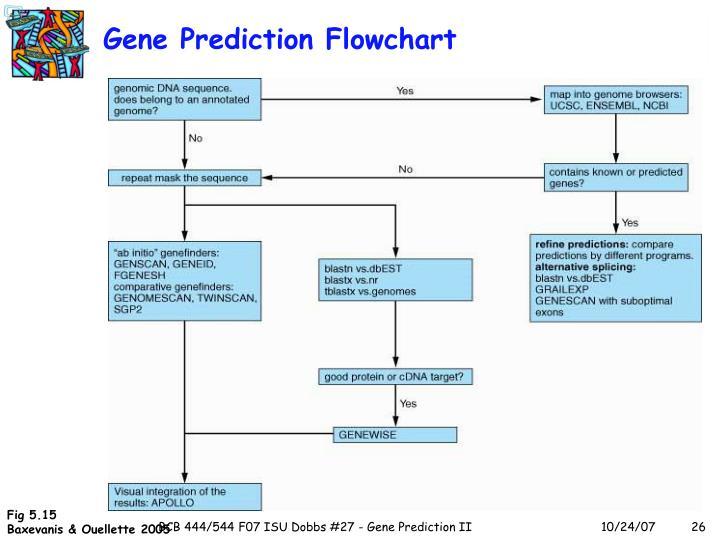 Gene Prediction Flowchart