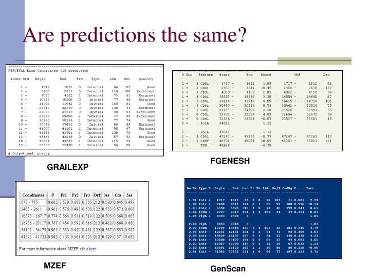 Are predictions the same?