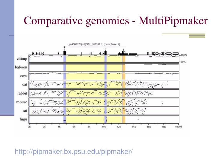 Comparative genomics - MultiPipmaker