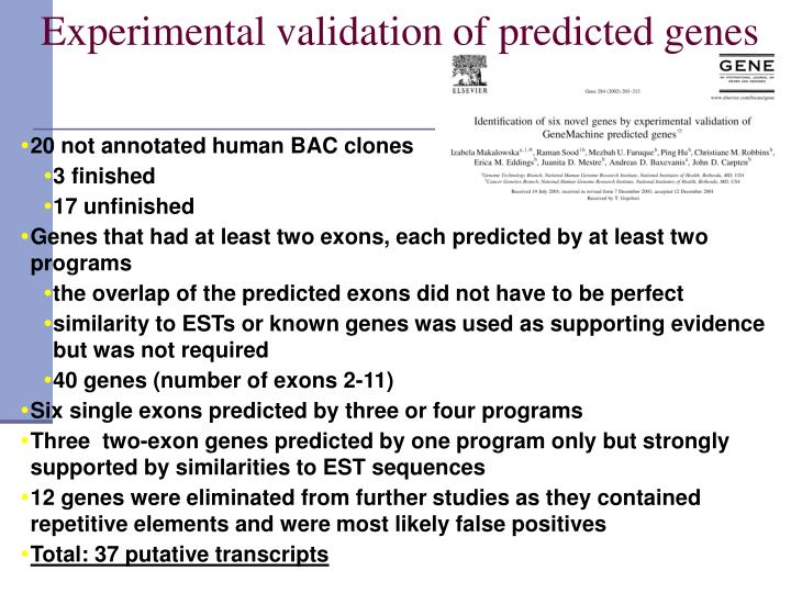Experimental validation of predicted genes