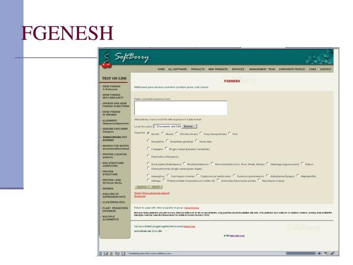 FGENESH