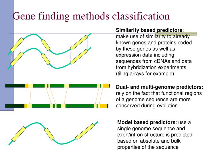 Gene finding methods classification