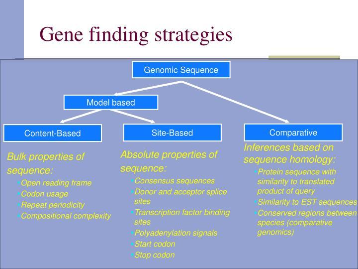 Gene finding strategies