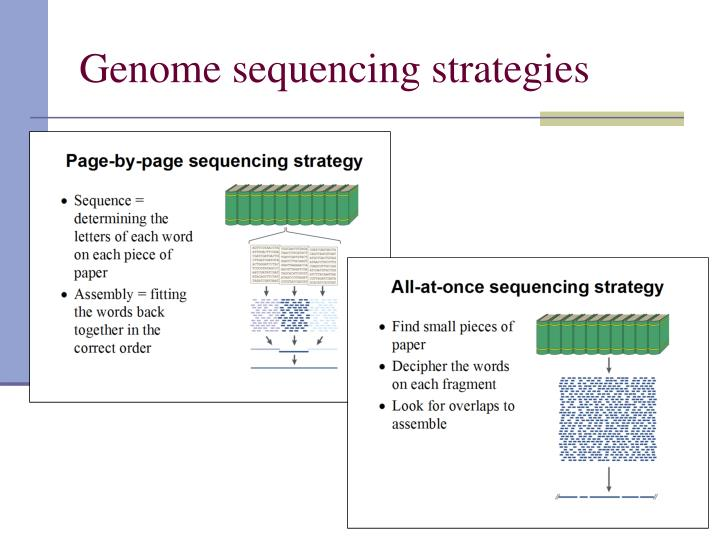 Genome sequencing strategies