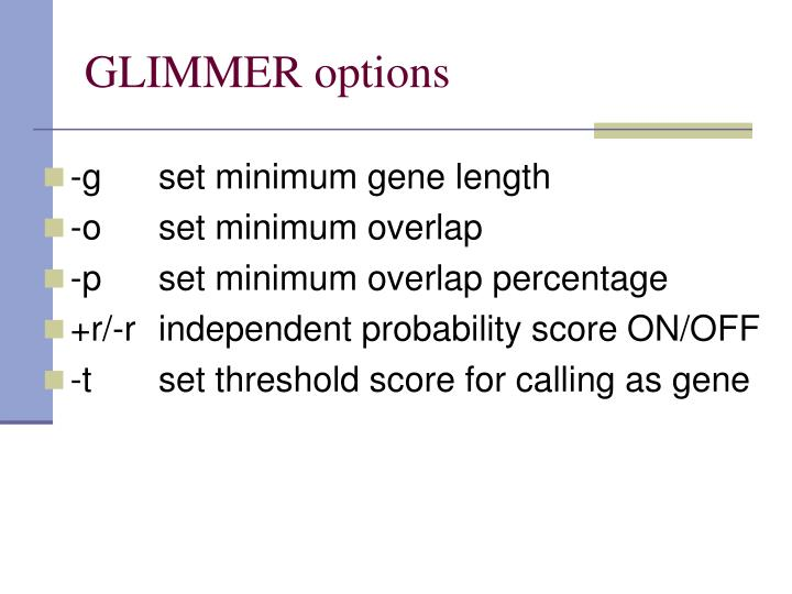 GLIMMER options