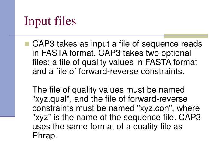 Input files
