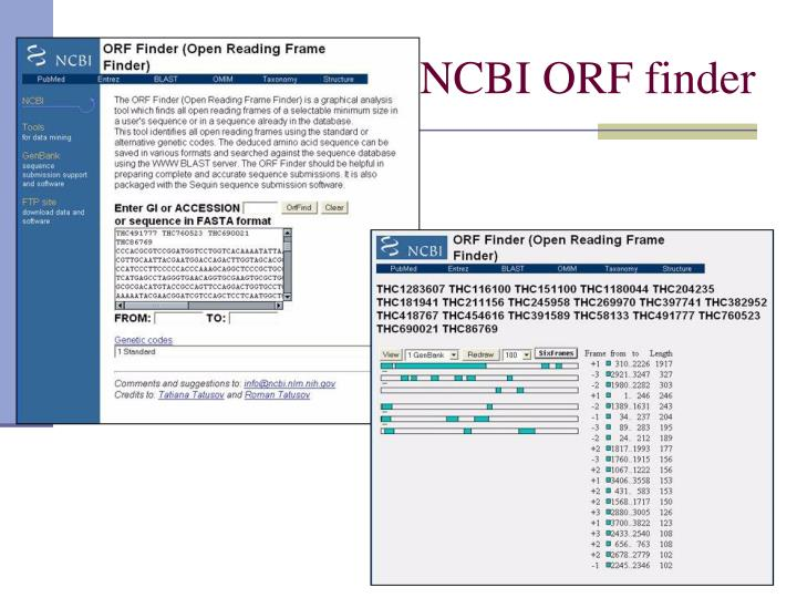 NCBI ORF finder
