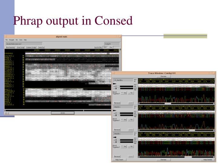 Phrap output in Consed