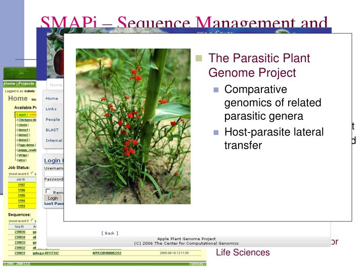 The Parasitic Plant Genome Project