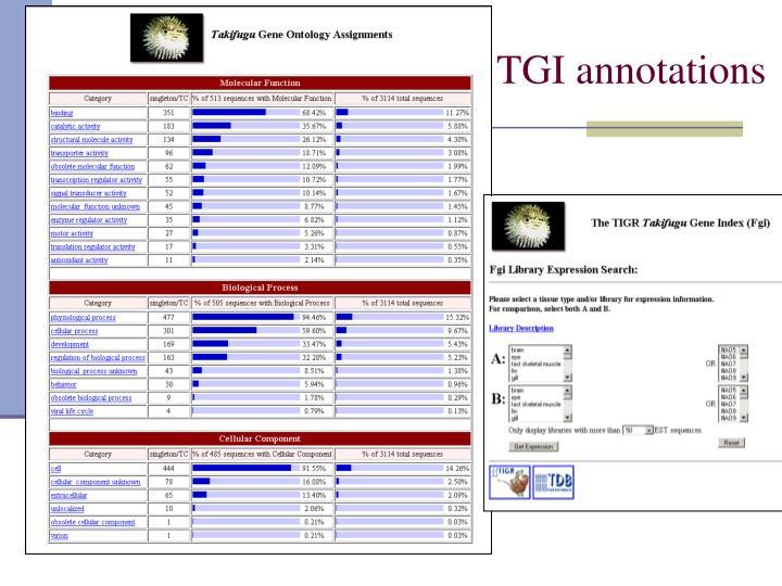TGI annotations