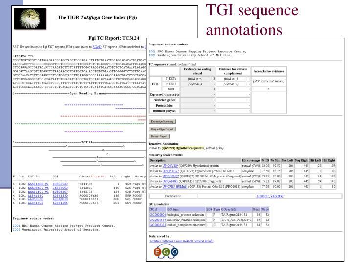 TGI sequence