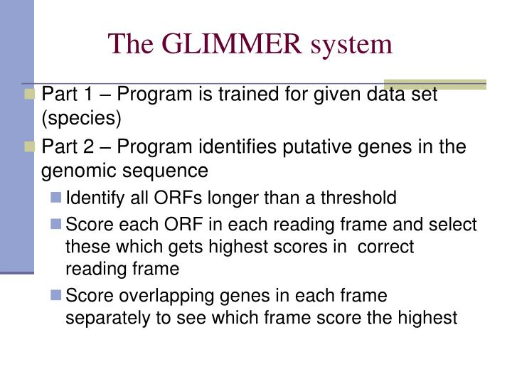 The GLIMMER system
