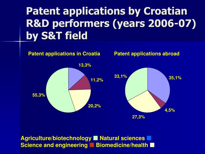 Patent applications by Croatian R&D performers (years 2006-07) by S&T field
