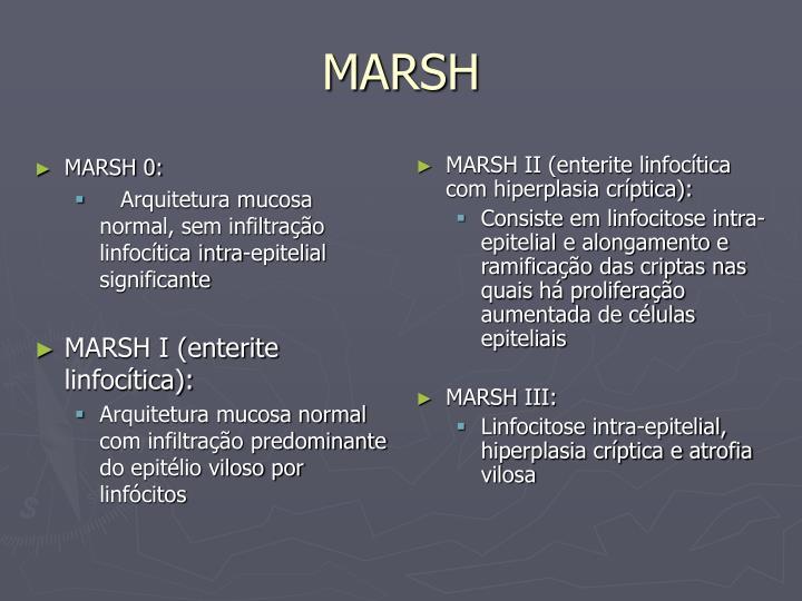 MARSH 0: