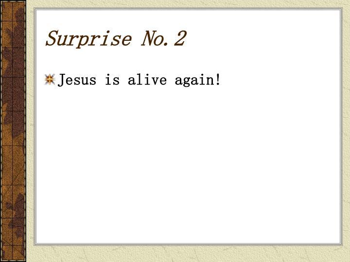 Surprise No.2
