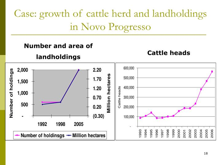 Case: growth of cattle herd and landholdings in Novo Progresso