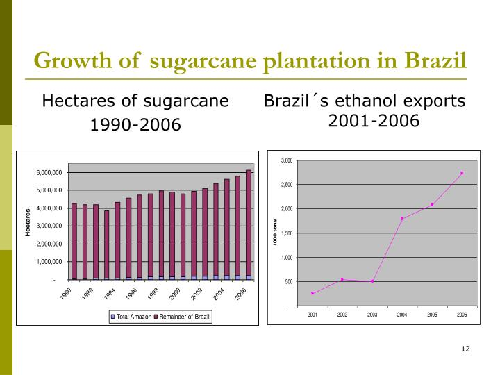 Hectares of sugarcane