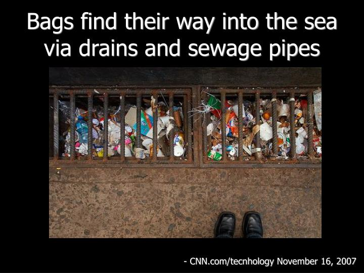 Bags find their way into the sea via drains and sewage pipes