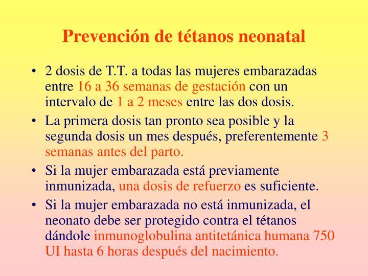 Prevención de tétanos neonatal