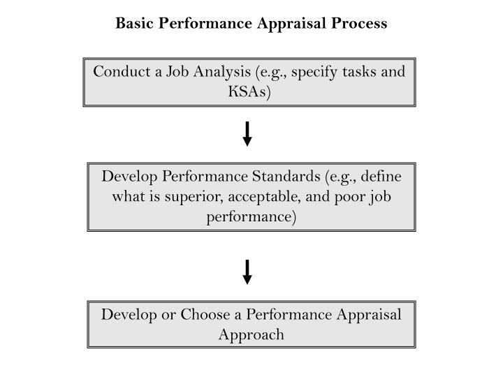 Basic Performance Appraisal Process