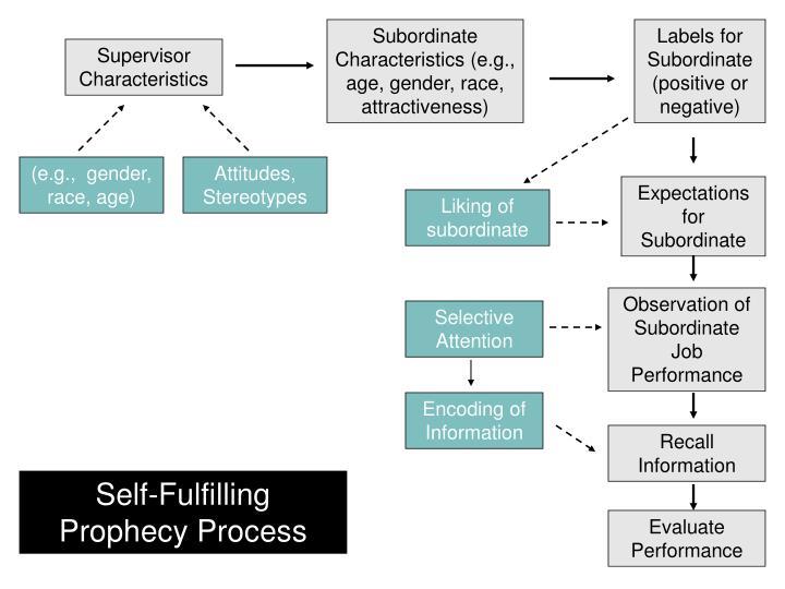 Subordinate Characteristics (e.g., age, gender, race, attractiveness)