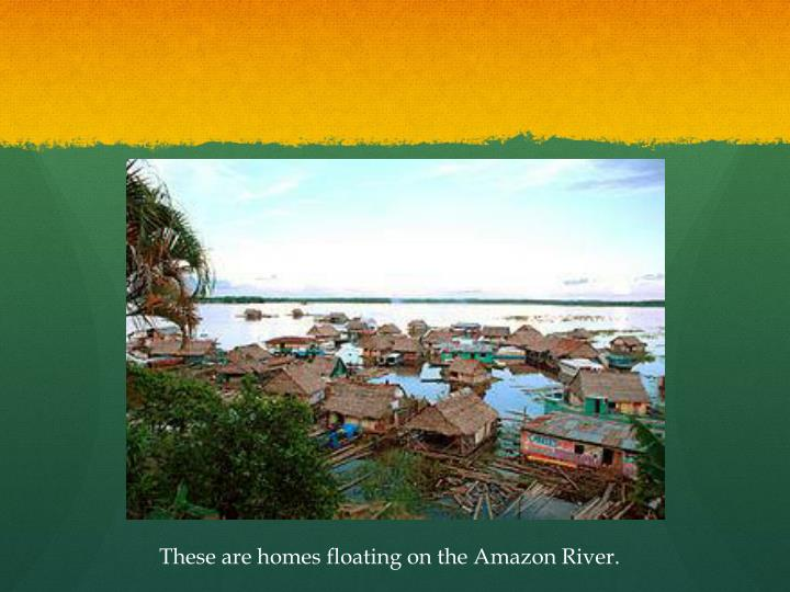 These are homes floating on the Amazon River.