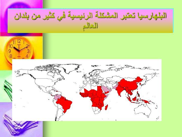 البلهارسيا تعتبر المشكلة الرئيسية في كثير من بلدان العالم