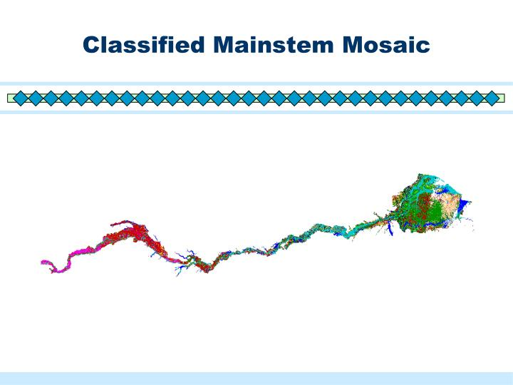 Classified Mainstem Mosaic