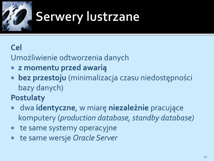 Serwery lustrzane