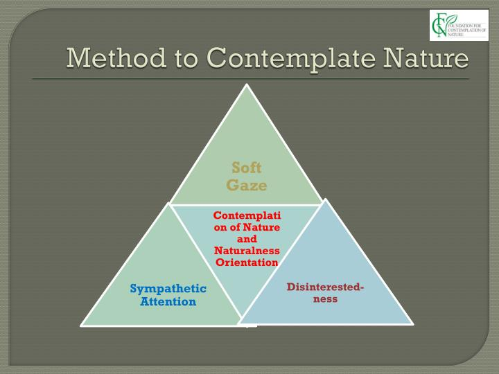 Method to Contemplate Nature