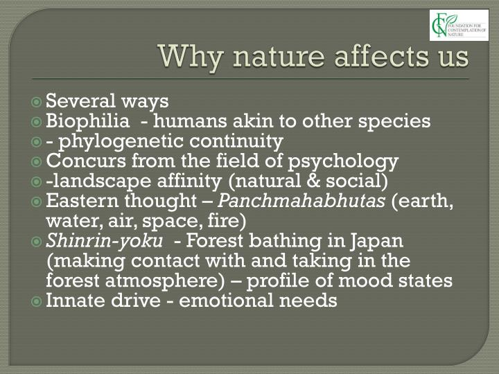 Why nature affects us