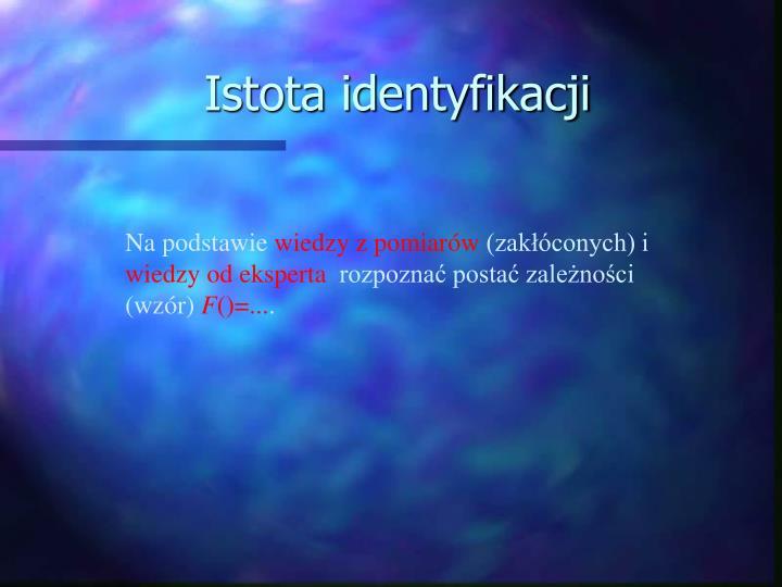 Istota identyfikacji