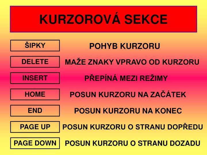 KURZOROVÁ SEKCE
